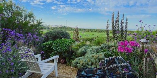 Driftwood Open Garden