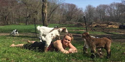 6/23 Sunday Evening Goat Yoga