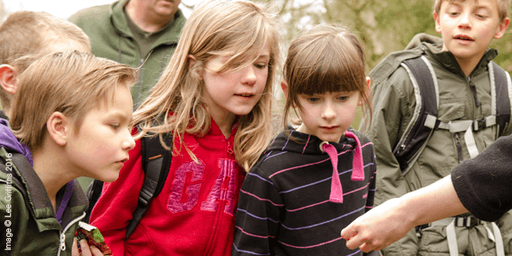 Forest Fridays at Bubbenhall Wood - Whittling