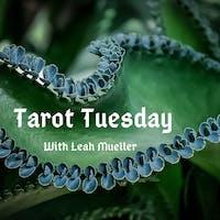 Tarot Tuesday