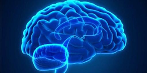 3rd Annual Traumatic Brain Injury (TBI) Resource Fair - Exhibitor Registration Form