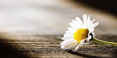 Spring 2019 - Loss of Spouse/Partner (9 Week Grief & Bereavement Support Program)