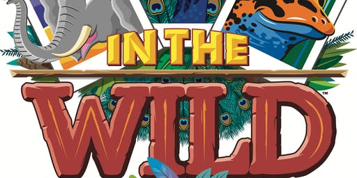In The Wild- Vacation Bible School  Mt View Baptist Church