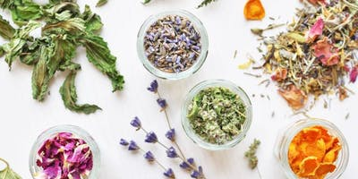 Herbal Salves, Ointments and Balms 101