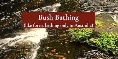 Bush Bathing (Hills District)