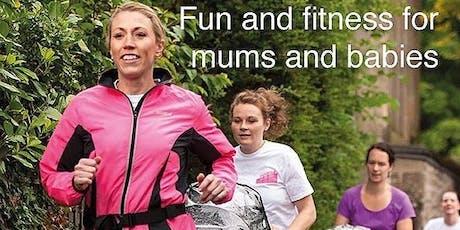 Safari Park Mums on the Run tickets