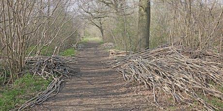 Woodland Management at Bradfield Woods (EWC2806) tickets