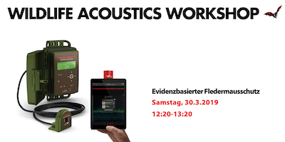 Wildlife Acoustics Workshop at Evidenzbasierter Fledermausschutz