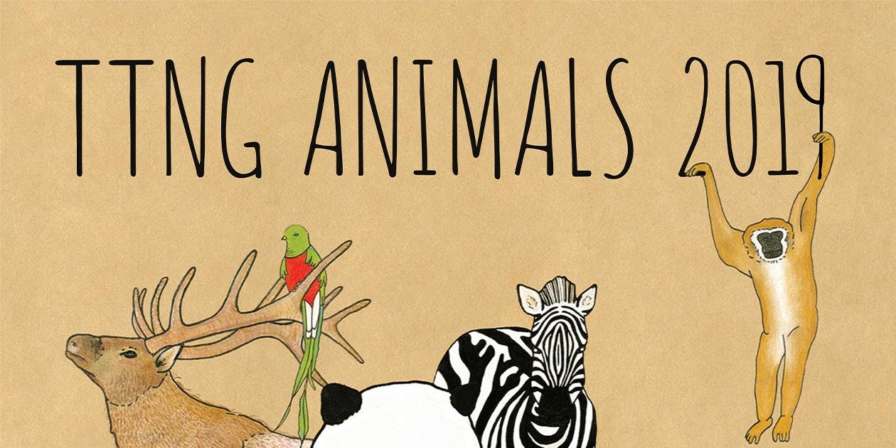 TTNG Animals 10th Anniversary Tour