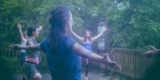 Yoga + Plant Walk: Hickory Meadows