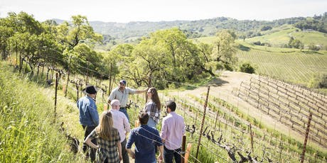 Pyramid Vineyard Hike & Lunch tickets