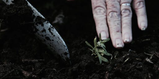 Organic Gardening Basics - Healthy soil