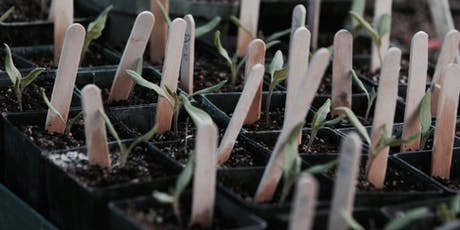 Organic Gardening Basics - Propagation and planting tickets