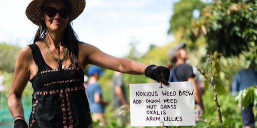 Organic Gardening Basics - Organic weed management