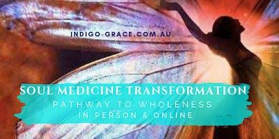 Soul Medicine Transformation Online Program for Women