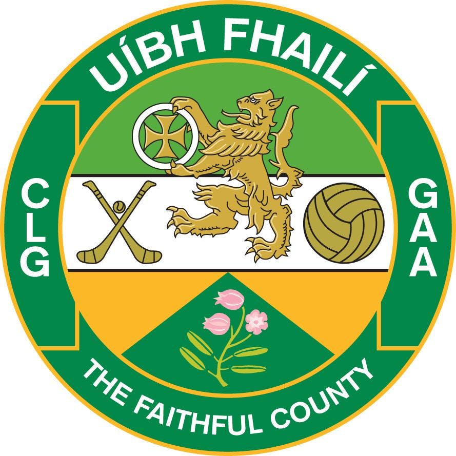 Offaly GAA Hurling Easter Camp (St Rynaghs Hurling Club)