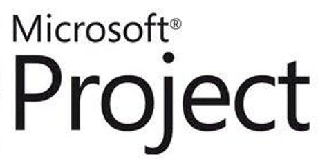 Microsoft Project Level 1 tickets