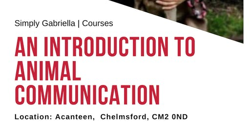 Introduction to Animal Communication