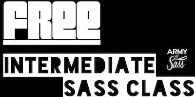 FREE Intermediate Sass Class