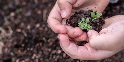 Lead in Soils: An Advanced Workshop