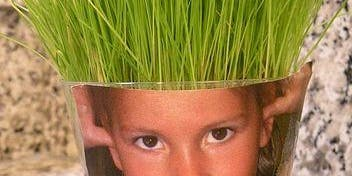 Kids Club: Wheatgrass Head Planter - Muncie