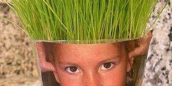 Kids Club: Wheatgrass Head Planter - Fishers