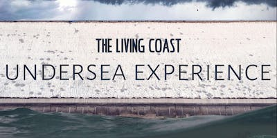 The Living Coast Undersea Experience & activities at Seven Sisters