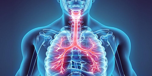 PLI Event: Respiratory Event aimed at GPs, Advanced Nurse Practitioners and Practice Nurses