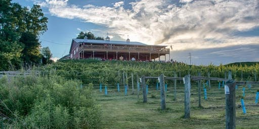 Yogi Expeditions Yoga and Wine Summer Tour: The Vineyard and Brewery at Hershey