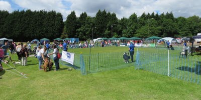 Rspca Coventry District Branch Annual Dog Show