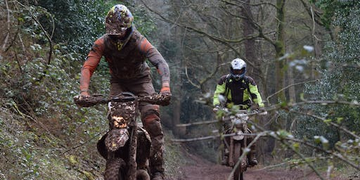 Somerset TRF Exmoor Forest Ride Day June 2019