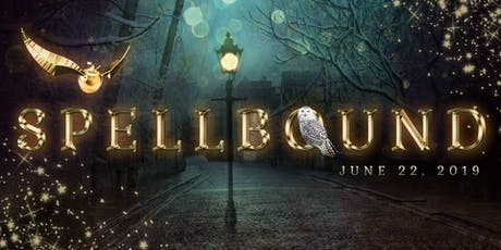 Potter in the Park Spellbound Festival tickets