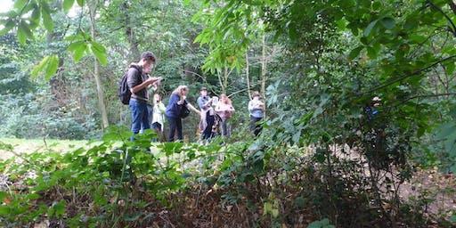 Workshop: Sketch book stroll  at Bradfield Woods (EOC2806)