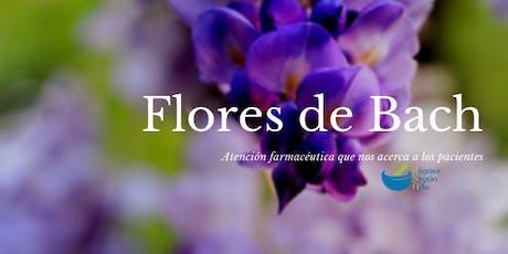 Flores de Bach, Atención farmacéutica que nos acerca a los pacientes ONLINE entradas