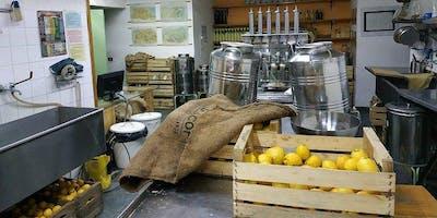 Esperienza di limoncello a Napoli: fabbrica, degustazione e bottiglia