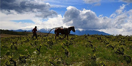 An Introduction to Piemonte tickets