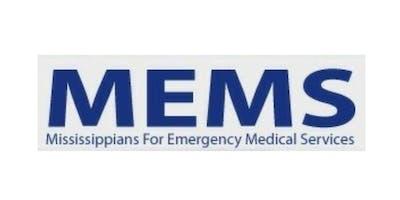 MEMS 2019 Summer Symposium