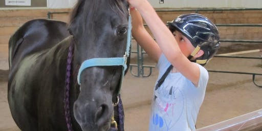 Youth Horsemanship Adventure Summer Camp