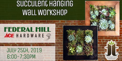 Hanging Vertical Succulent Wall at Federal Hill ACE Hardware