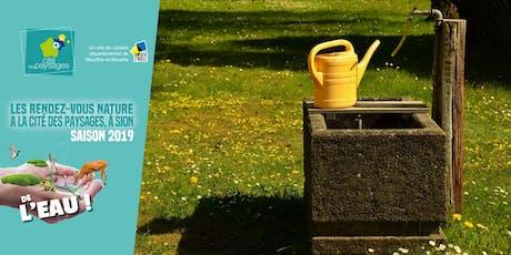 """Mercredi des jardiniers: Un tour """"eau"""" jardin. billets"""