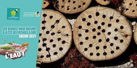 Mercredi des Jardiniers: Fabriquer un hôtel à insectes. billets