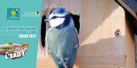 Mercredi des Jardiniers: Réaliser des nichoirs à oiseaux. billets