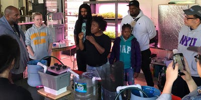 Intro+to+Aquaponics+with+Oko+Farms%3A+Class+2+%28