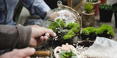 Create-Your-Own Terrarium Workshop - JR Garden Club