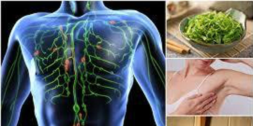 Clearing The Lymphatic System To Ensure Hormonal Balance Part 3 Tickets Wed May 8 2019 At 600 PM