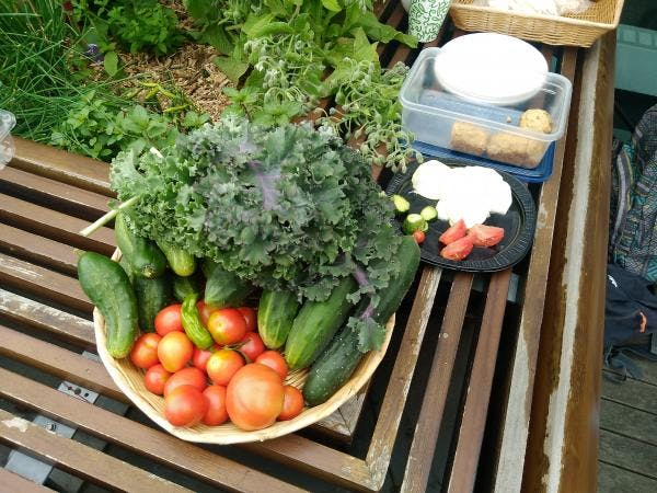 Urban Food Growers as Ultra-local Suppliers f