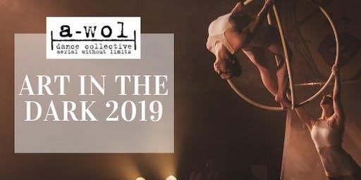 Art in the Dark: 2019 SHOW BEGINS AT DARK Sunday August 4, 2019
