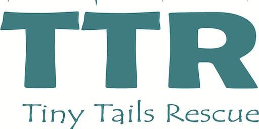 Tiny Tails Multiple Choice Quiz Night