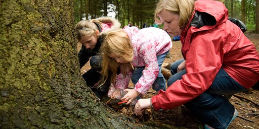 Outdoor Learning - TeachMeet 26th September