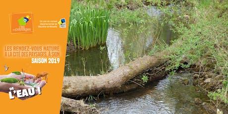 Sortie nature: Le vallon de Bellefontaine au fil de l'eau. billets